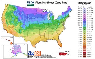 The Case for Fall Planting