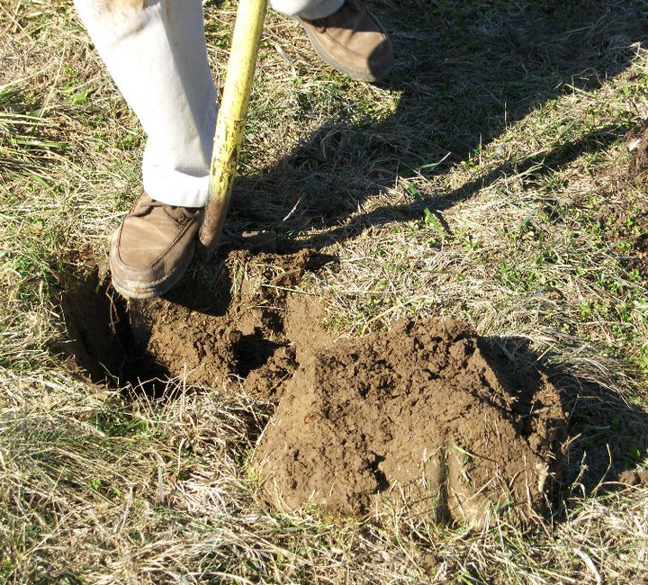 Digging a Hole 2