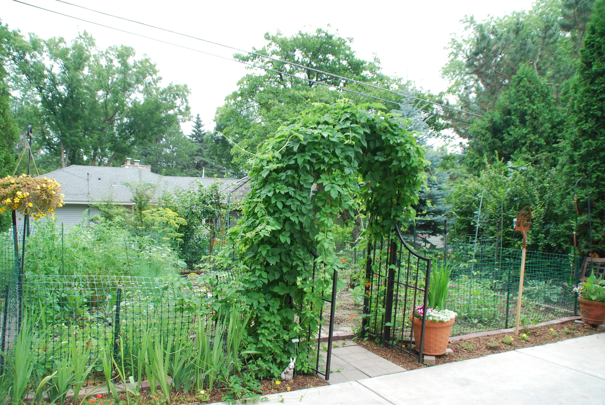 Grow a flavorful landscape stark bro 39 s for How to landscape a garden