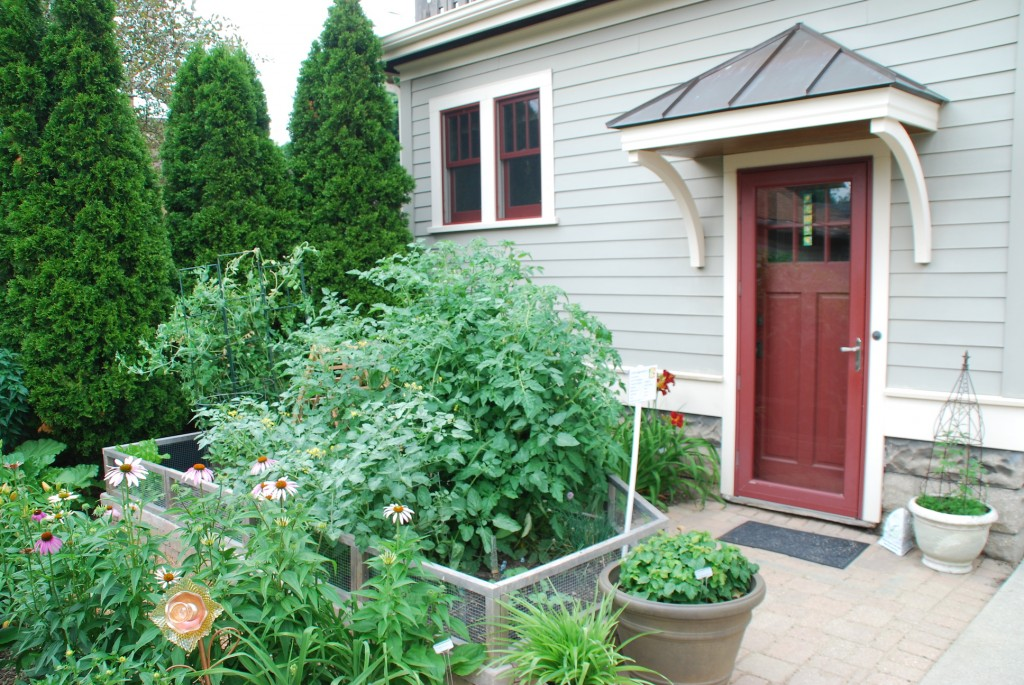 Grow a flavorful landscape stark bro 39 s for Small kitchen garden