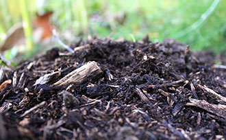 Preparing Your Soil for Winter
