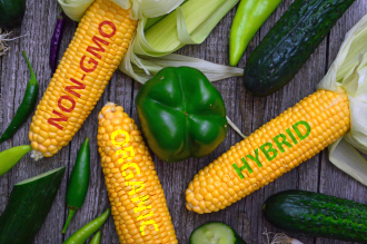 Organic vs. Non-GMO vs. Hybrid: What's the difference?