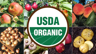 What USDA Organic Certification Means