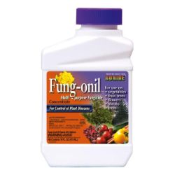Photo of Bonide® Fung-onil™ Multi-Purpose Fungicide