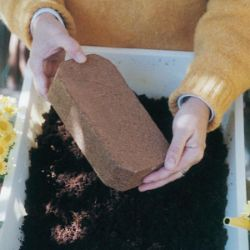 Photo of Coco-Fiber Planting Medium