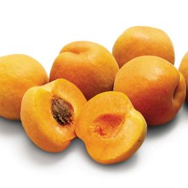 Photo of Harglow Apricot