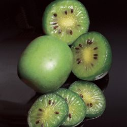 Photo of Anna Hardy Kiwi