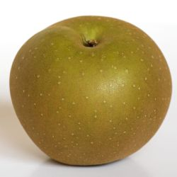 Photo of Golden Russet Apple