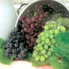 Red, White & Blue Seedless Grape Vine Collection