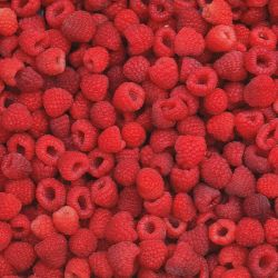 Photo of Heritage Red Raspberry