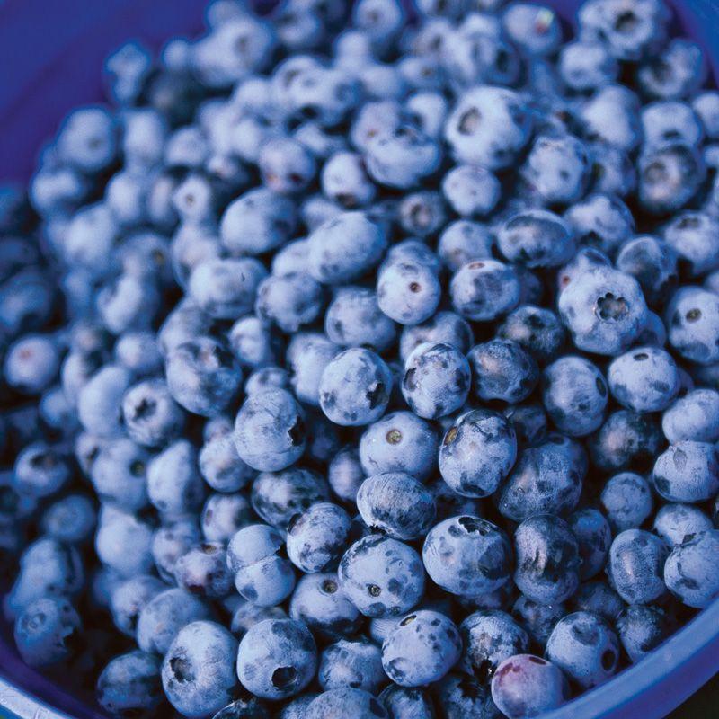 ... $14.99 Northblue Blueberry