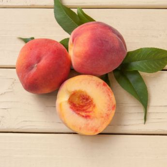 Freestone Peach Trees