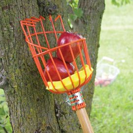 True Temper® Fruit Harvester