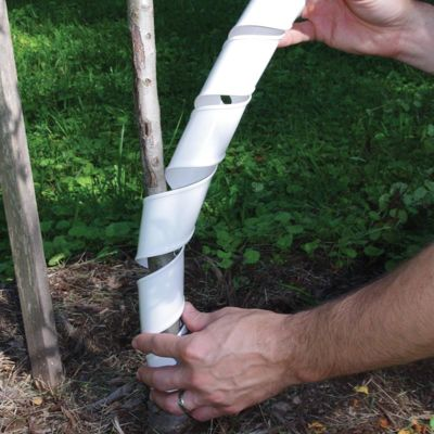 Photo of Stark® Tree Guards