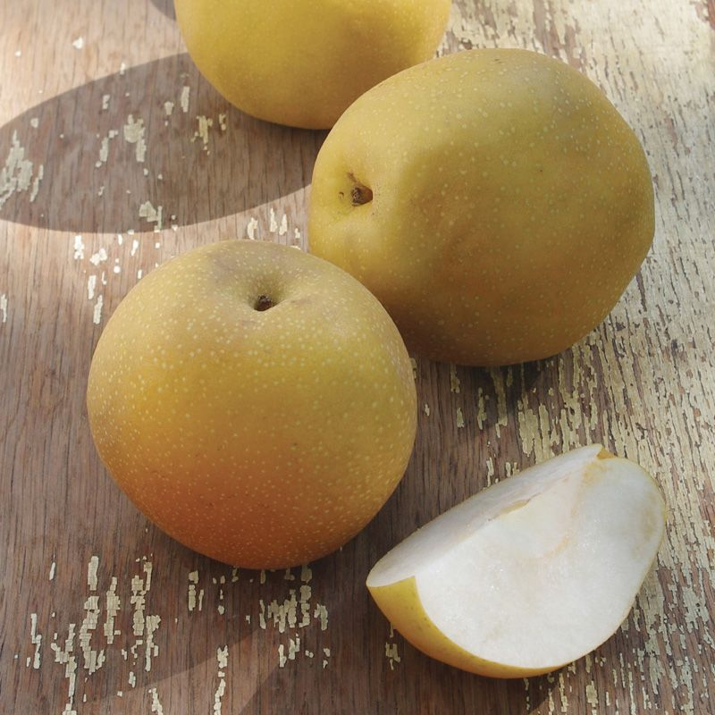 Asian pear nutrients