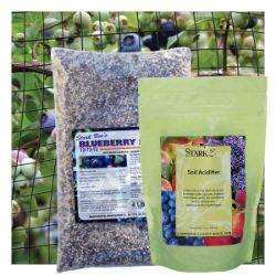 Blueberry Plant Success Kit