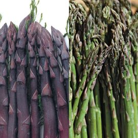 Two Pair Asparagus Plant Collection