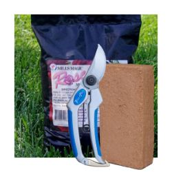 Rose Plant Success Kit