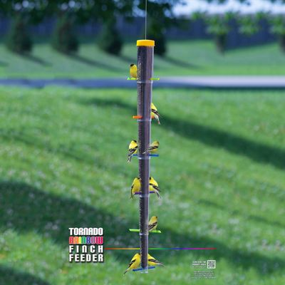 Tornado Rainbow Finch Feeder