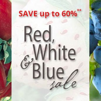 Red, White & Blue Sale