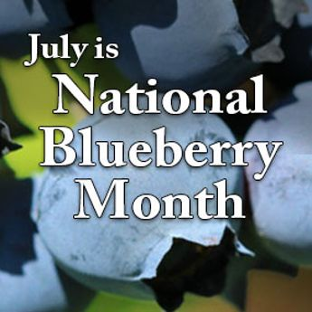 Blueberry Month Sale