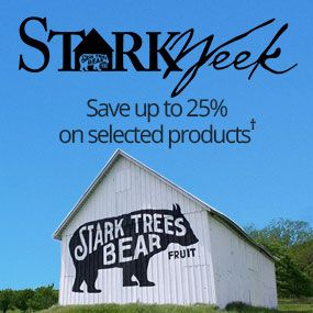 Save up to 25% on selected products during Stark Week!