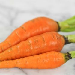 Scarlet Nantes Carrot Seed