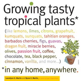 Photo of Growing Tasty Tropical Plants