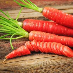 Kyoto Red Carrot Seed