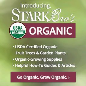 USDA Certified Organic trees, plants, growing supplies & how-to guides.