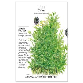 Photo of Tetra Dill Seed