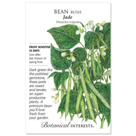 Jade Bush Bean Seed