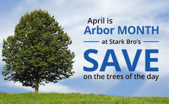Shop Arbor Month Specials - Save Now!