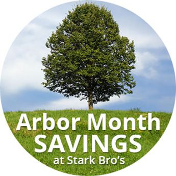 Arbor Month Preview Sale