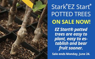 Save now! EZ to plant, EZ to grow. EZ Start® Potted Trees!