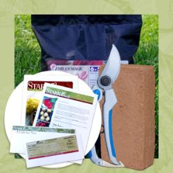 Rose Plant Success Kit Gift Certificate Collection