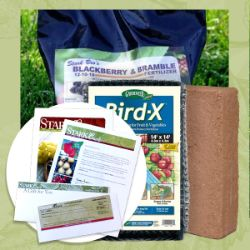 Blackberry Plant Success Kit Gift Certificate Collection