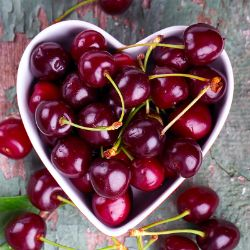 Sweet and Sour Pair of Cherries Collection