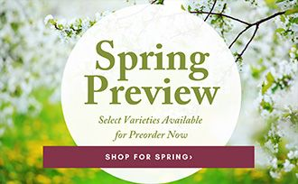 Get the first chance at select plants and trees for Spring! Preorder some of our favorite varieties, available now. Hurry, these will go fast!