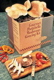 Photo of Portabella Mushroom Kit