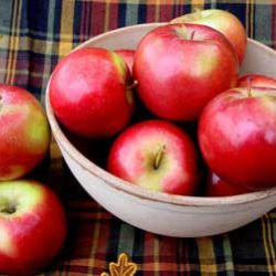 Photo of SnowSweet® Apple